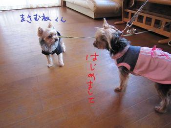 IMG_1836 blog_R.jpg